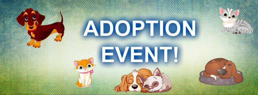 hoof woof amp meow animal rescue adoption event   hoof woof